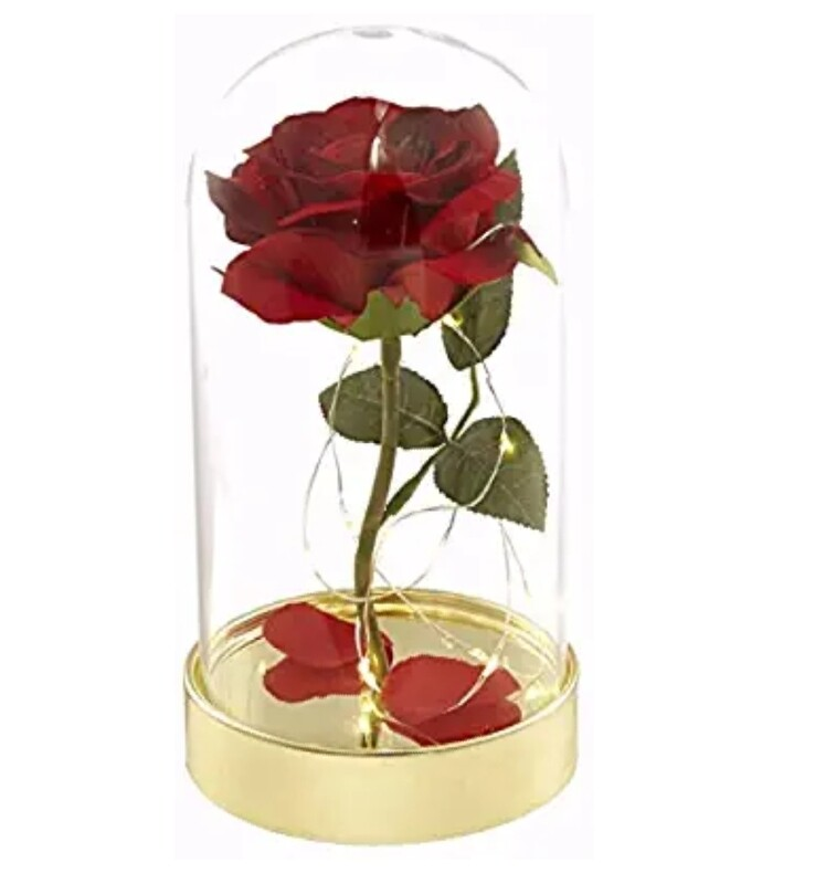 Enchanted Red Rose Beauty and the Beast