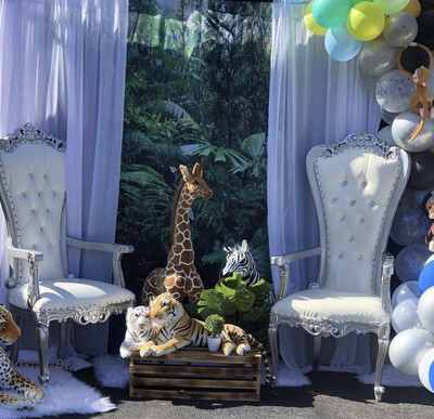 SGBES Baby Shower Package B