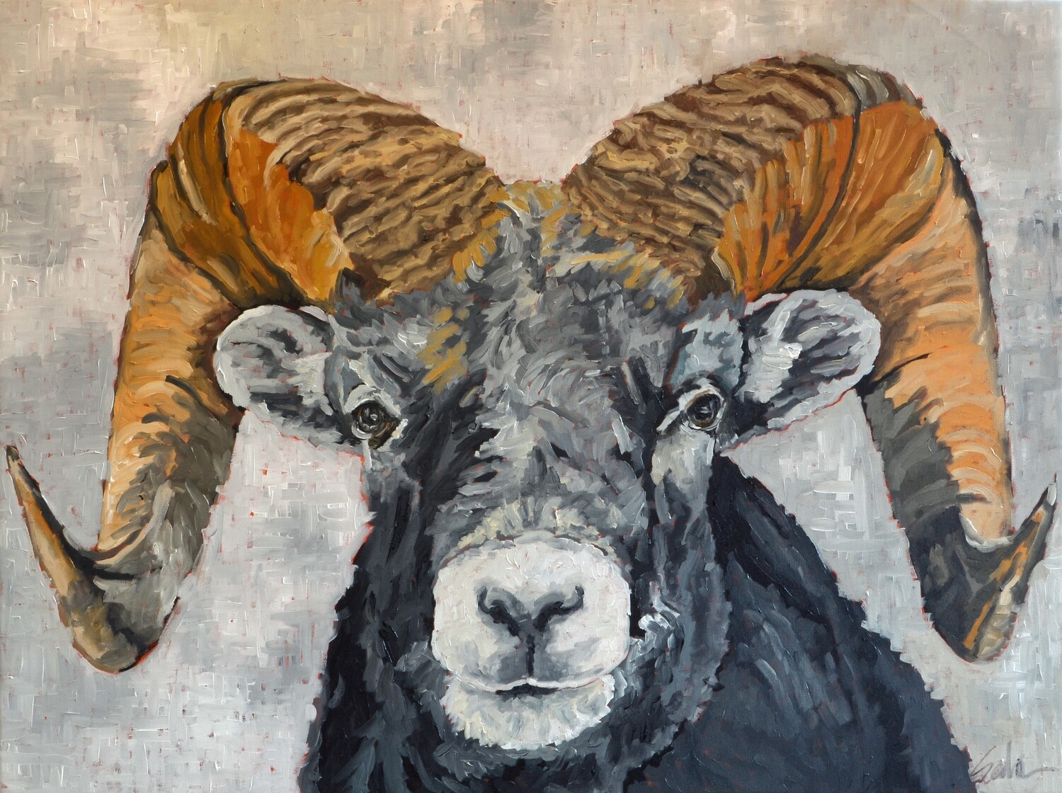 Bighorn Sheep, oil on canvas, 40x30