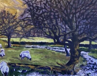 Grazing Sheep, 30x24