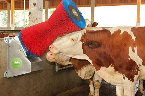 Elektrokratzbürste Cow Cleaner Wandmodell
