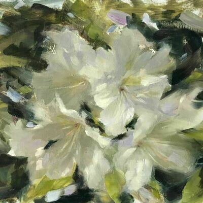Rhododendrons - Single Card