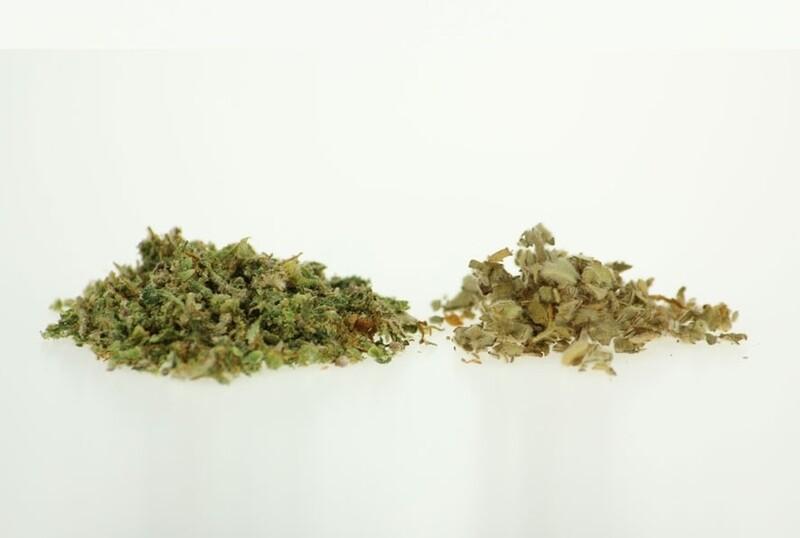 Knaster Nutzhanfblütentee (je Gramm)