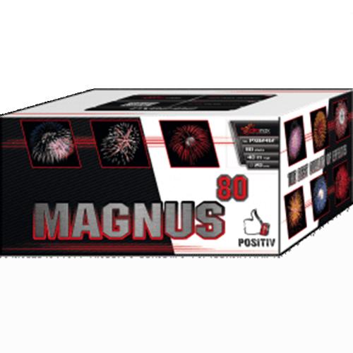 Magnus PXB2412