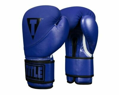 TITLE Boxing Cyclone Leather Training Gloves