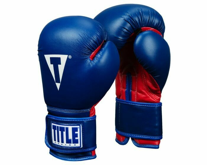 TITLE Essential Boxing Gloves