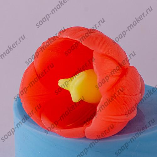 Тюльпан 2 3D