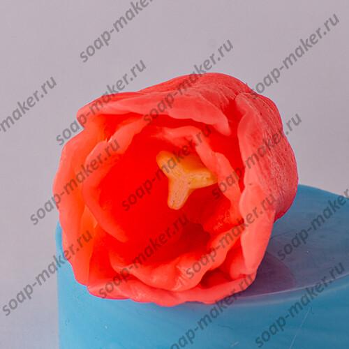 Тюльпан 3 3D