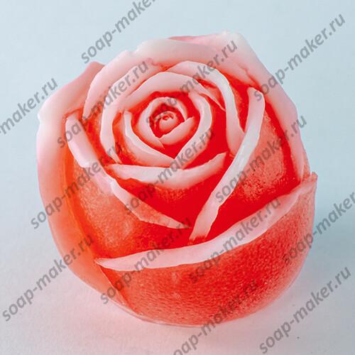 Роза 6 3D