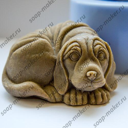 Собака 3D