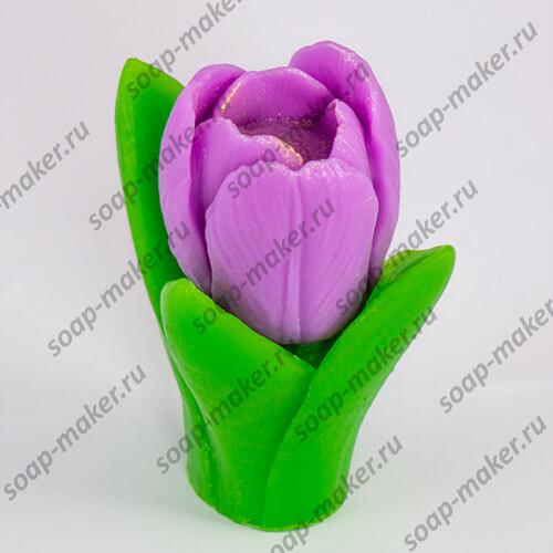 Тюльпан с листьями 3D