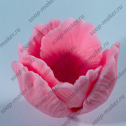 Тюльпан раскрытый 3D