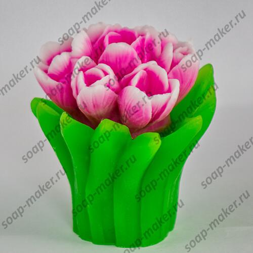 Букет тюльпанов 2 3D