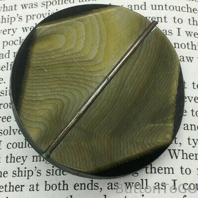 large celluloid with metal wire OME
