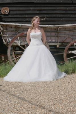 Orianna- Tulle Drop Waist Wedding Dress