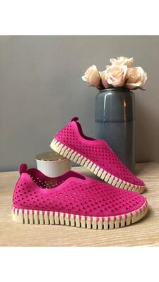 Rose Violet Tulip Slip-On
