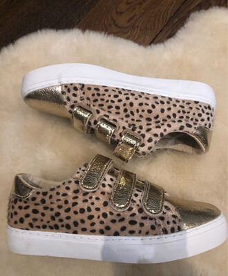 Gold Velcro Strap Trainer with Dalmation Print