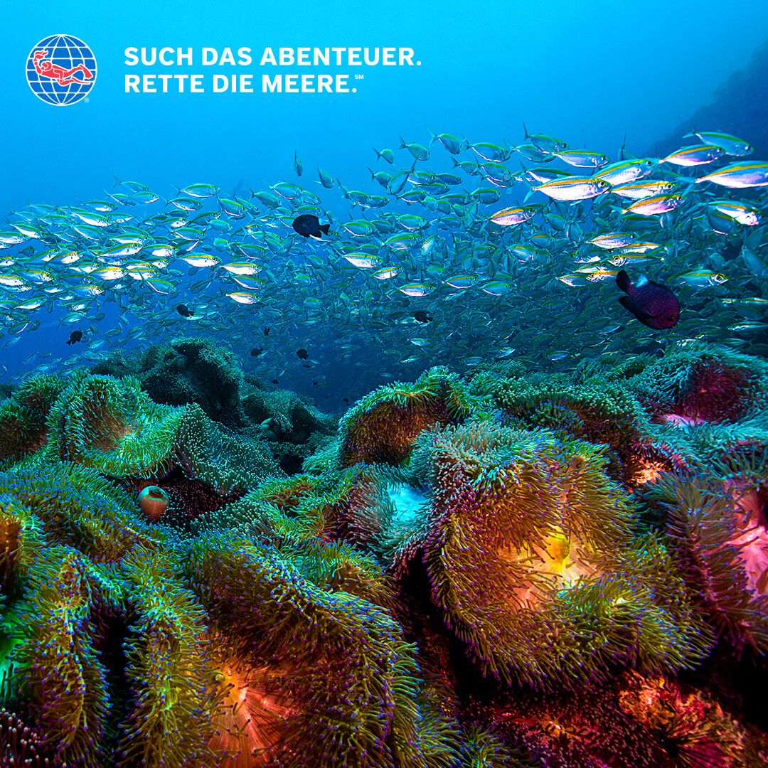 PADI Advanced Open Water Diver Online-Theorie