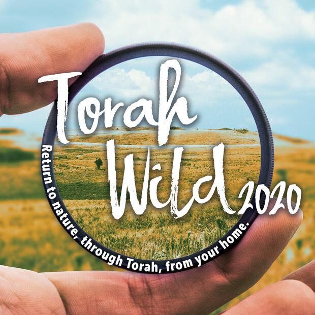 Torah Wild