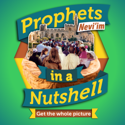 Nevi'im in a Nutshell - Get the whole story
