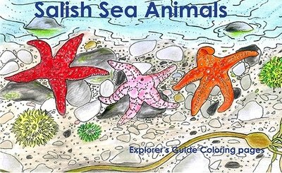 Salish Sea Animals Explorer's Guide Coloring Book