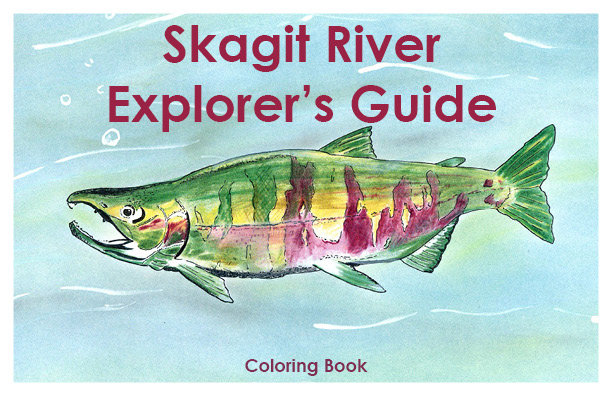 Skagit River Explorer's Guide Coloring Book