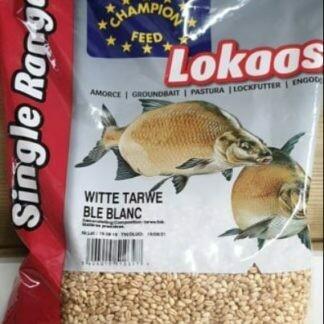 Witte Tarwe
