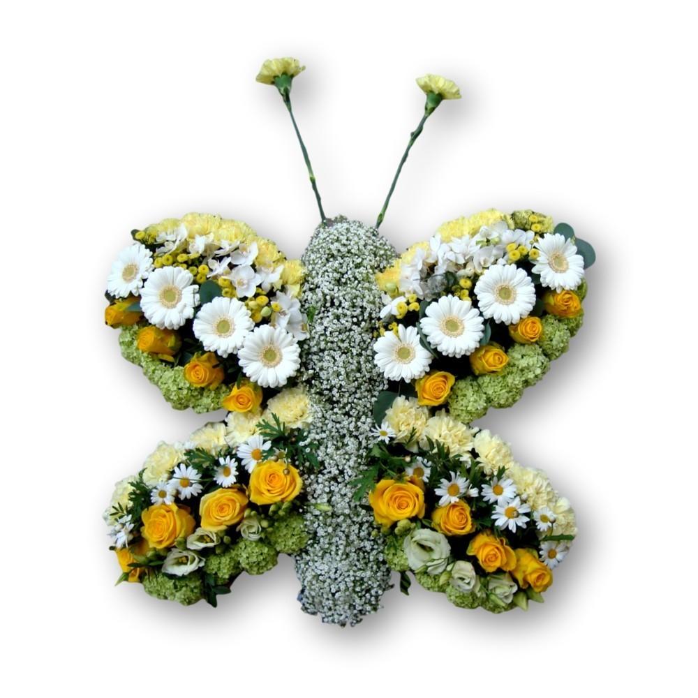 Schmetterling weiss/gelb