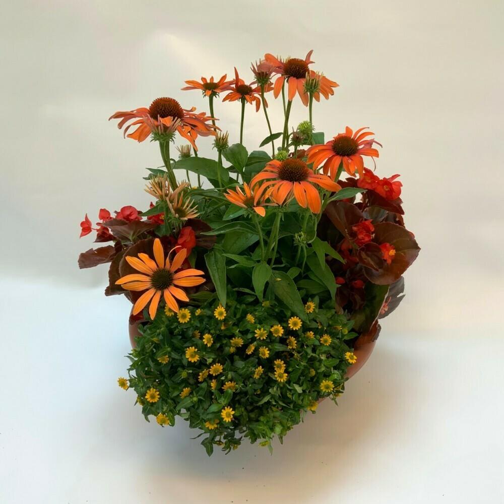 Bepflanztes Gefäss Sommer - orange/rot/gelb
