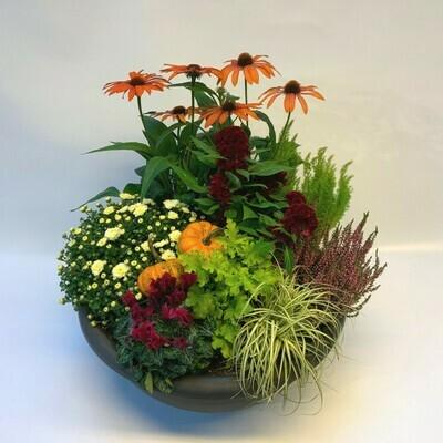 Bepflanztes Gefäss Herbst - orange/rot
