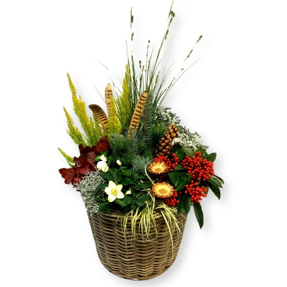 Bepflanztes Gefäss Winter - bunt