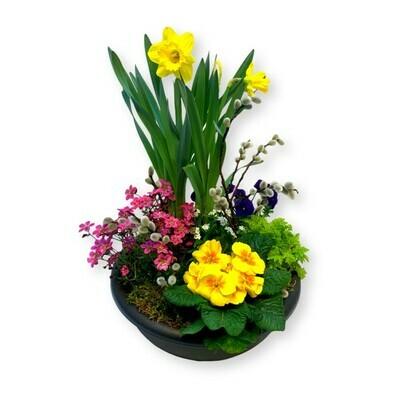 Bepflanztes Gefäss Frühling - bunt