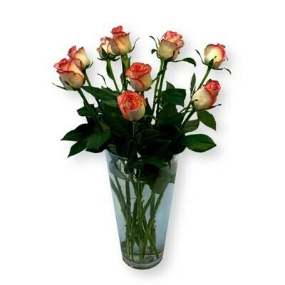 Rosen rosa/ weiss