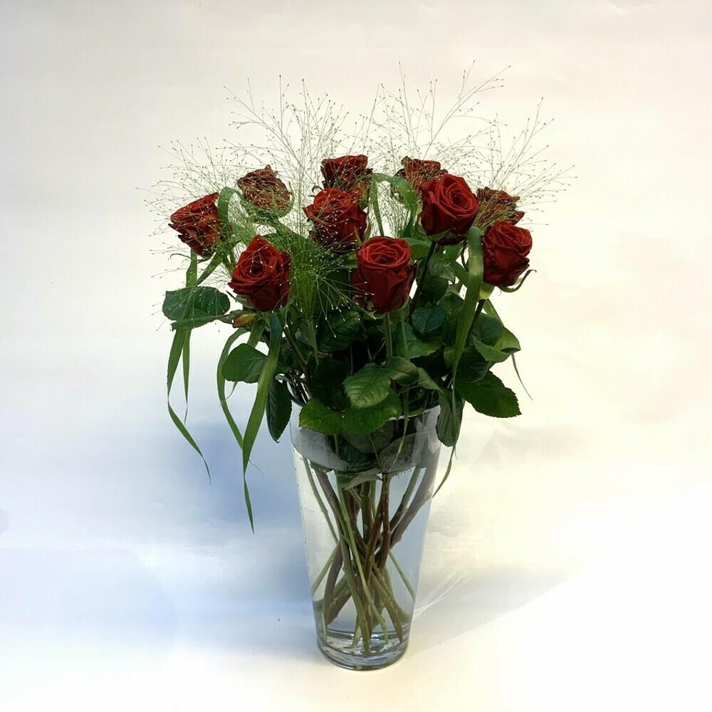 Rosen rot mit grün