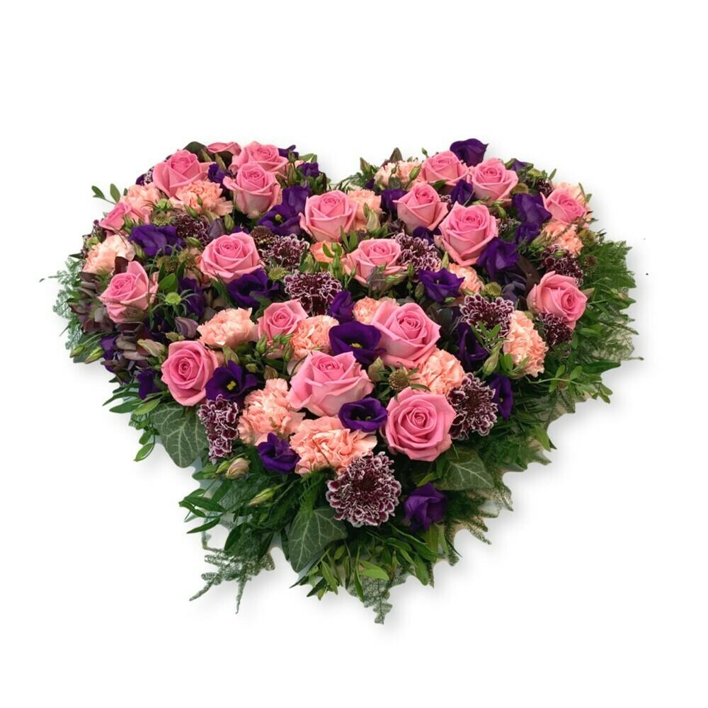 Herz violett/rosa