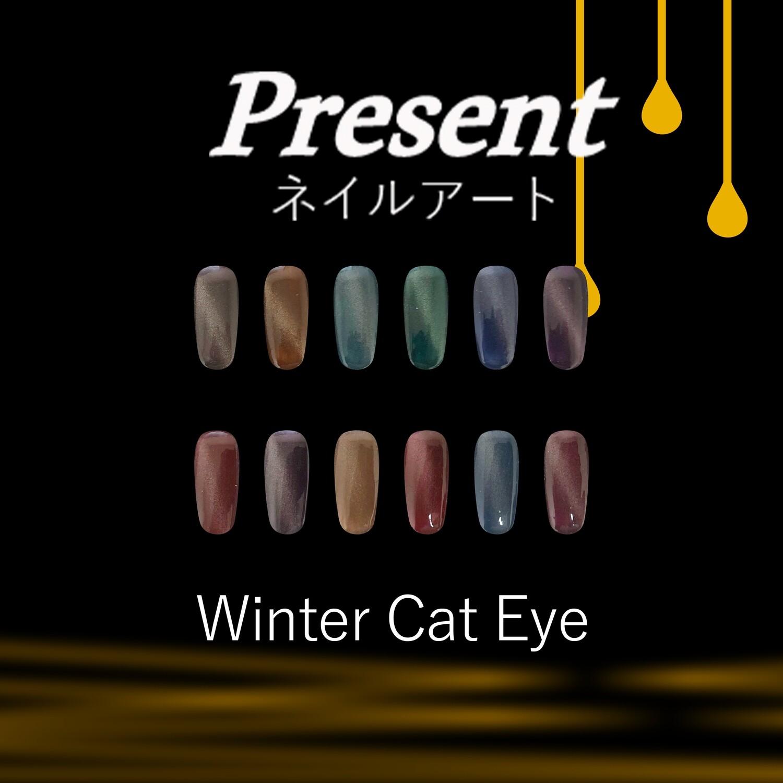 [Present] Winter Cat Eye Gel Polish