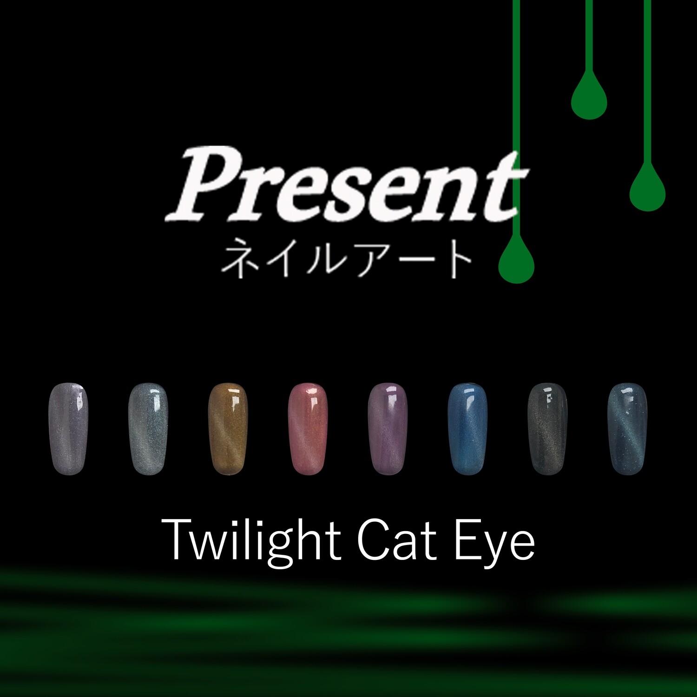 [Present] Twilight Cat Eye Gel Polish