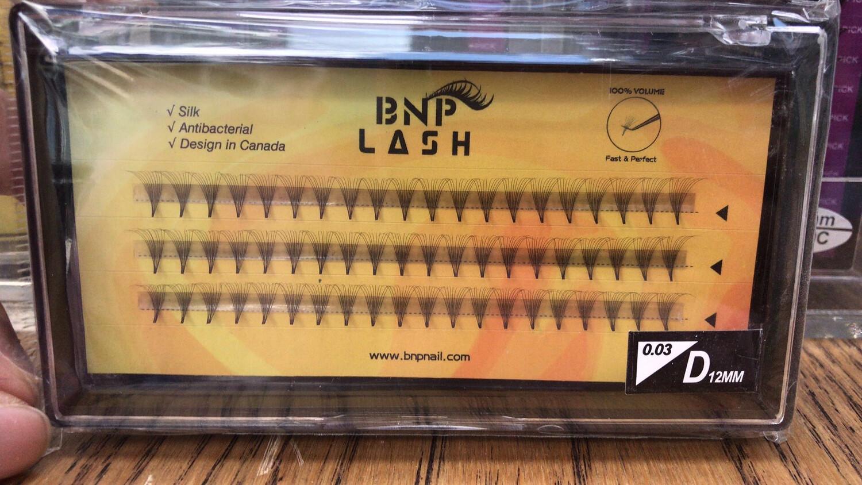 [BNP] Premade Volume Lash (10D, D/DD, 0.03)