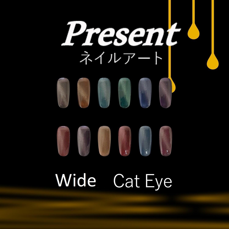 [Present] Wide Cat Eye Gel Polish