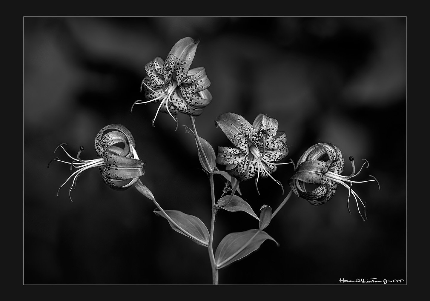 Four Trumpeters