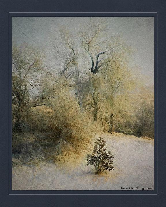Blissful Winter 2