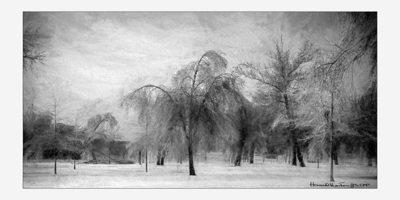 Winter Mystery