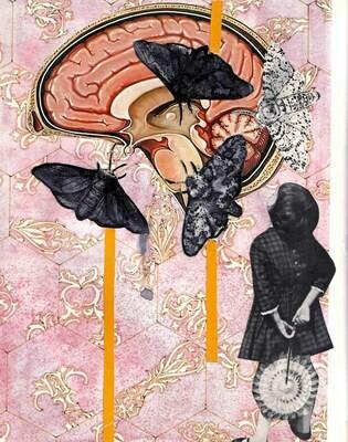 Moths Collage Print