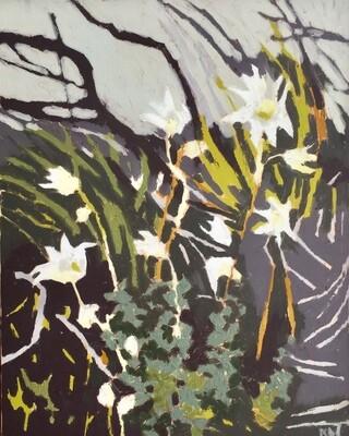 Flannel Flowers Dobroyd Head Track