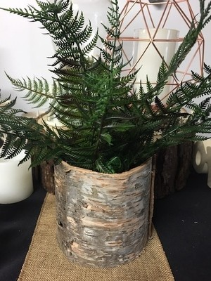 Birch (Bark) vases