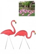 Flamingo's - pair