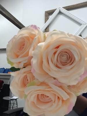 Roses - Peach
