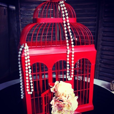 Birdcage - Red - medium 54cm W / 34cm