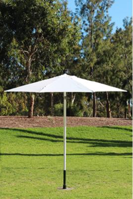 Market Umbrellas 3 x 2.6m H