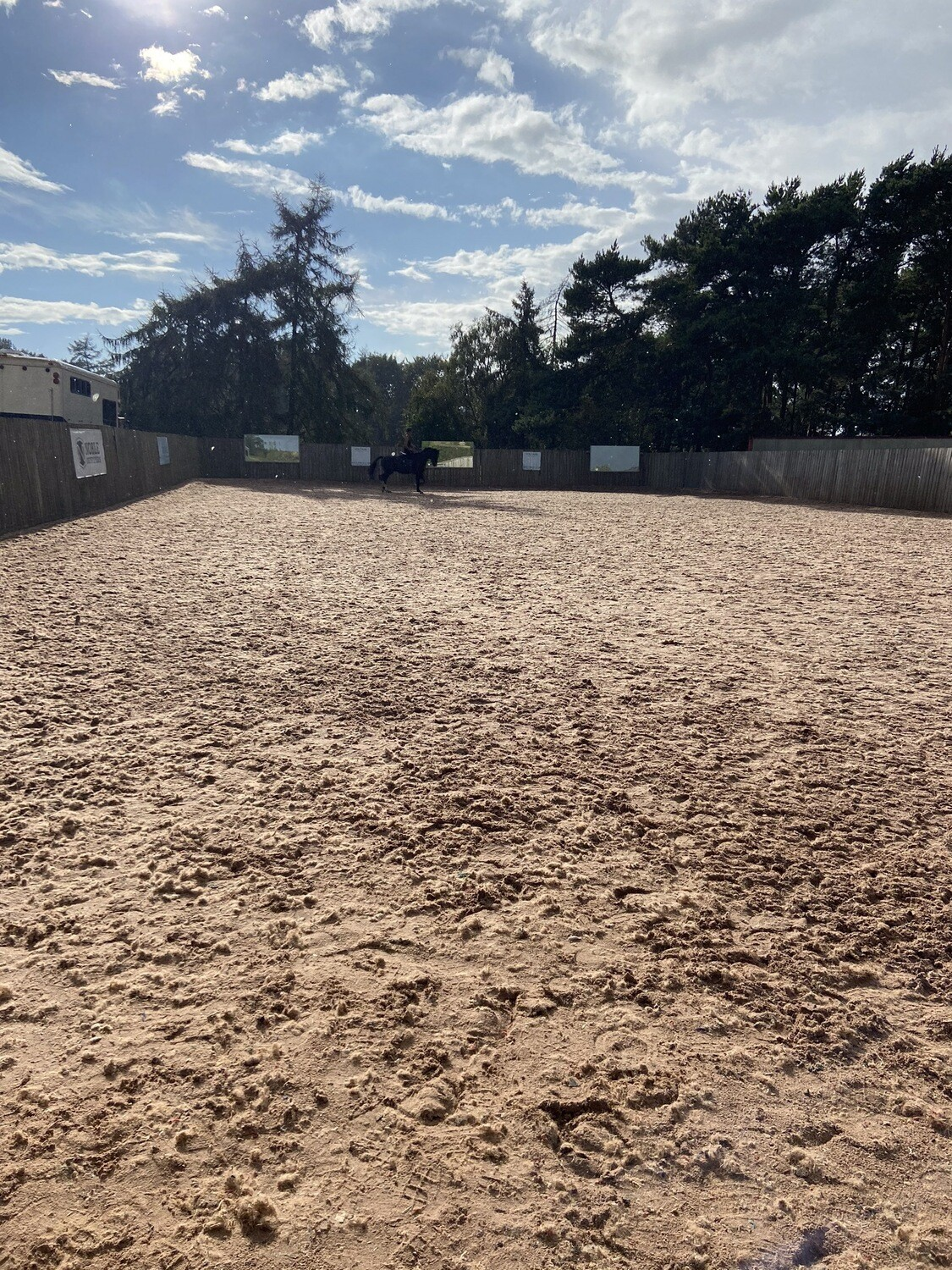 Testt: Mounted Review : 30 Minutes (Clients Must Have Had A Previous Assessment) : October 19th : Hyde Lodge, Leics (Arena Fee Of £5 Payable To Host On The Day)